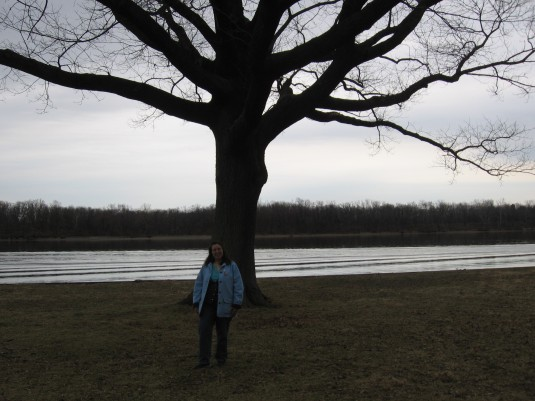 Close-up of the tree along the Delaware River