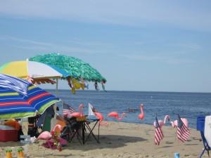 a beach escape.