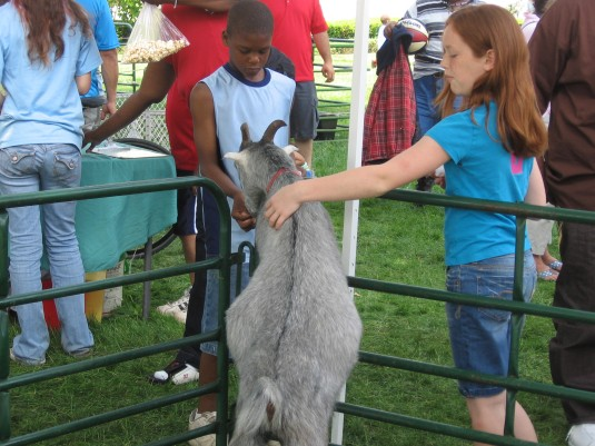 "Kids enjoy the petting zoo ""kid"" goat."