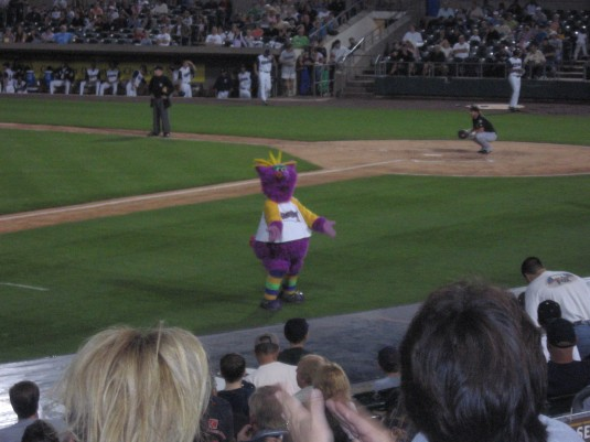 Somerset  Patriots mascot